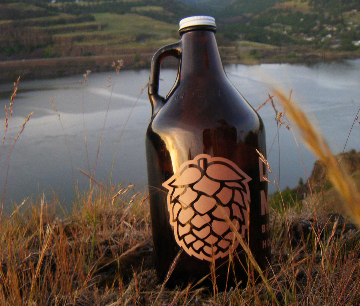 best beer growler